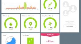 Dashboard Fitbit